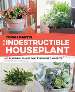 4.3 The Indestructible House Plant
