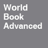ico world book advanced